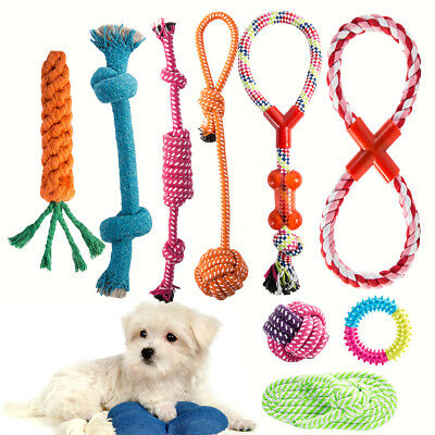Dog Teddy Chew Knot Toys Pet Puppy Teeth Bear Braided Tough Strong Rope 10pcs C