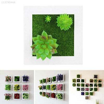 6A23 Creative Pastic Flower Frames Picture Pastic Plant Photo Frame