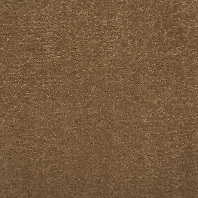 Walnut Brown Oxford Quality Twist Carpet Cheap Stain Resistant Felt Backing 4m 5