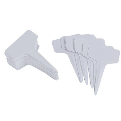 100 pcs Garden Labels gardening plant classification sorting sign tag card EW