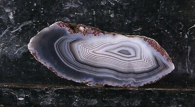SIC:Botswana Agate Slab-Solid Lapidary Material- Banded Rough Stone