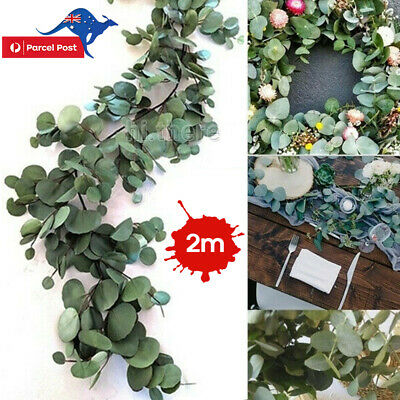 2M Greenery Eucalyptus Leaves Silk Artificial Vine Garland Wedding Decor AU
