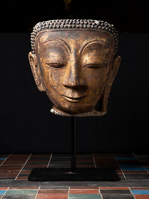 Antique stucco Buddha head from Burma, Gilded with 24 krt. gold