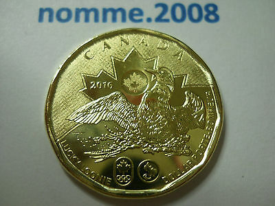 🍁 2016 CANADA $1 -- Olympic **Lucky Loonie** -- UNCIRCULATED 🍁