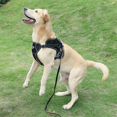 Non Pull Large Dog Harness Big Dogs Easy Walk Control Reflective Heavy Duty Vest