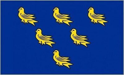 Essex 5Ft X 3Ft Flag British English County Counties 5X3/' Large Banner