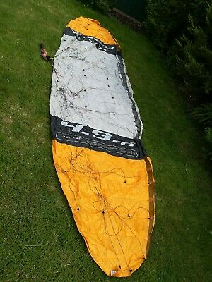 Outdoor Sports 2.5m Power Soft Kite Dual Line Stunt Parafoil Kite with S1L0