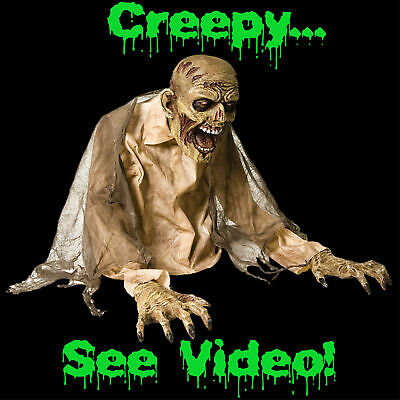 Halloween Life Size GASEOUS CRAWLING ZOMBIE Walking Dead Haunted Accessory Prop