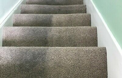 Carpet Cleaner -Professional service
