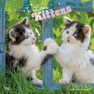 I Love Kittens  2020 Square Wall Calendar by Browntrout Cat Cats Free Post