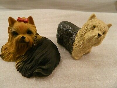 Yorkshire Terrier Yorkie Dog 2 Dogs