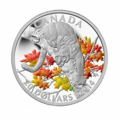 Canada 2014 $20 1 Oz Pure Silver Cougar Perched on a maple Tree