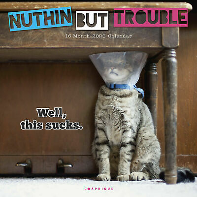Nuthin' But Trouble CAT & KITTENS 2020 Square Wall Calendar by Browntrout