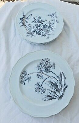 Antique Keramik, Lot  of 12 Teller/plates, BWM & Cie. England, Design: Colgonda
