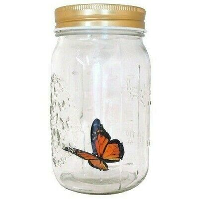 Butterfly. Monarch. Tap the lid and watch it fly just like a real butterfly!