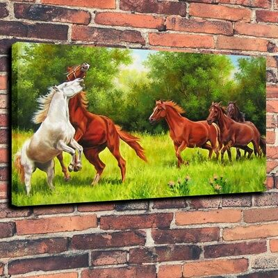 Home  Decor Art Print on Canvas Animal Oil Painting Horse Spring Forest 16X24
