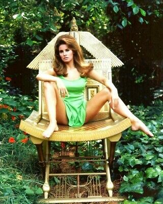 Raquel Welch 8x10 Glossy Photo Picture 11051901813