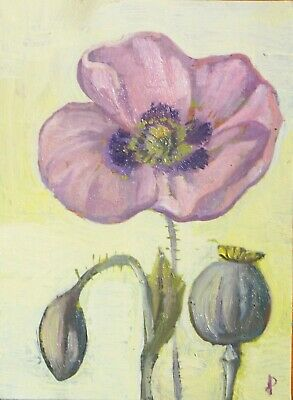 ACEO  painting POPPY flower botanical Dora Pilssala ORIGINAL oil painting