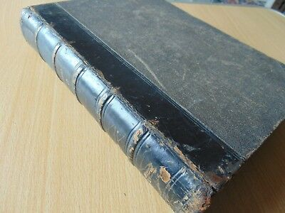 Scarce H/B Book 1876 History Of Earth & Animated Nature Oliver Goldsmith Vol 2