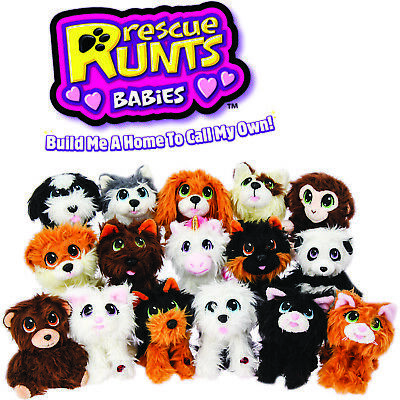Rescue Runts Babies - 16 Adoptable Pets That You Rescue, Adopt, Groom & Love!