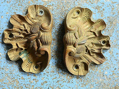 1800 Pair French Rococo Bronze Furniture Pulls  Shell Fish Conch Oyster Scallop