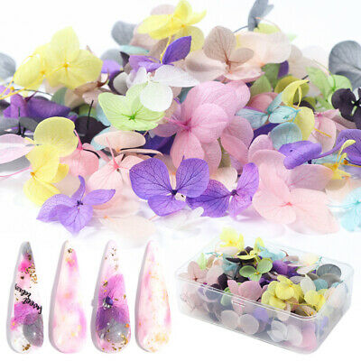 Mixed Dried Flowers 3D Nail Art DIY Nails Decoration Flower Tips Acces DIY Charm