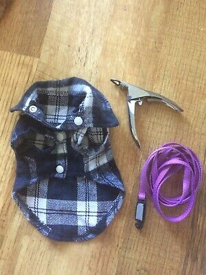 Cat Kitten Lot Shirt Clippers Leash