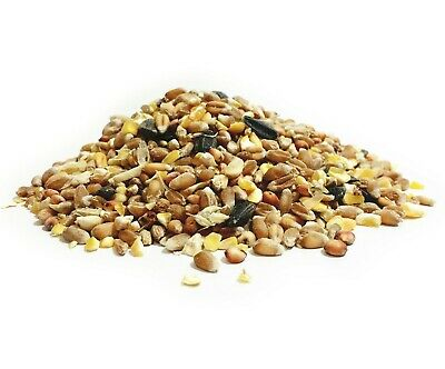 Pet Performance Four Season Wild Bird Seed Food For Feeders & Bird Tables