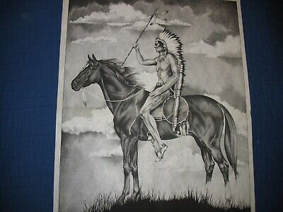 * TRI CHEM 8335 INDAIN BRAVE ON HORSE SPEAR Picture to Paint TRICHEM