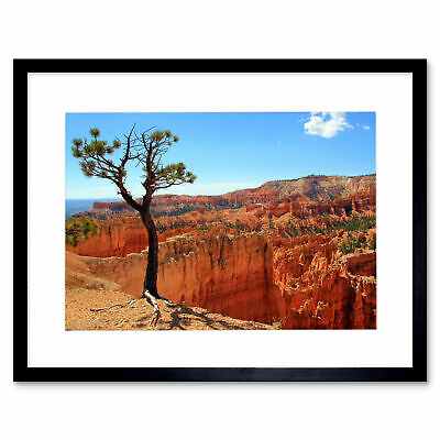 BRYCE CANYON UTAH DESERT PHOTO ART PRINT POSTER PICTURE BMP1485A