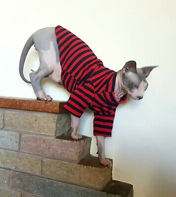 STRIPES SUPER STRETCH cat clothes for Sphynx, cat clothes, hairless cat clothes