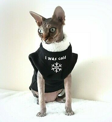 personalised SPHYNX clothes, I WAS COLD! sweater for a Sphynx cat, cat clothes