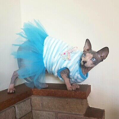 adult L fluffy DRESS for a cat, Sphynx cat clothes, pet jumper, Sphynx fashion,