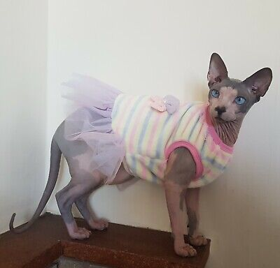 adult fluffy DRESS for a cat, Sphynx cat clothes, pet jumper, Sphynx fashion,