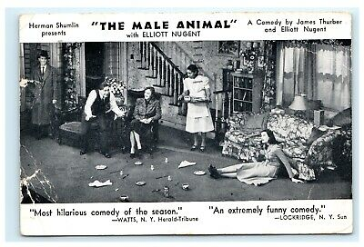 The Male Animal Elliott Nugent 1950s Broadway Comedy Theater Postcard E5
