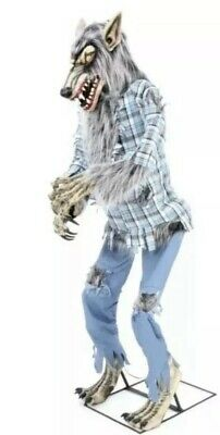 Halloween LIFESIZE 6.5FT ANIMATED GROWLIN SNARLIN WEREWOLF Haunted Prop GEMMY