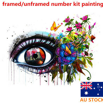 Framed Multi-colored Eye Paint By Numbers Kit Canvas Painting Wall Home Decor
