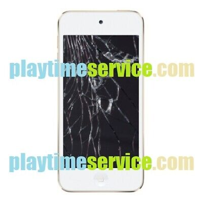Apple iPod touch 6 Screen Replacement Service