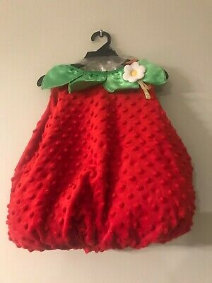 Strawberry  halloween costume toddler 12 months by Candy Corn Lane plush & hat