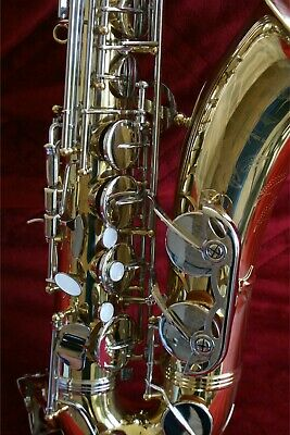 Alto Saxophone - S22, + Mouthpieces, 4 Reeds, & Awesome Gator Case!