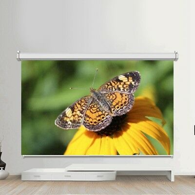 "50-120"" inch Projector Screen Electric Cinema Remote Home HD TV 3D 16:9 Foldable"