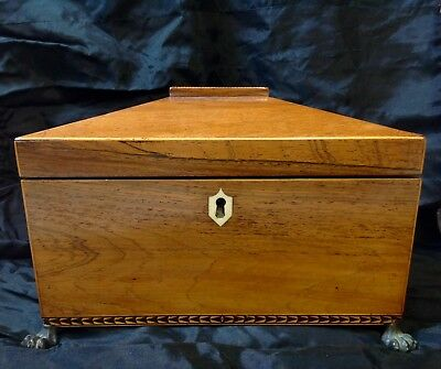 Antique Regency Rosewood Sarcophagus Tea Caddy, Twin Wooden Interiors
