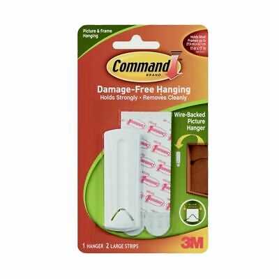 Command Wire Backed Picture Hanging Hook Kit 1 Hanger & 2 Large Strips