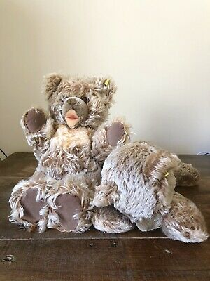 2 STEIFF BEARS Zotty Made In Germany VINTAGE CUTE OLD With Tags
