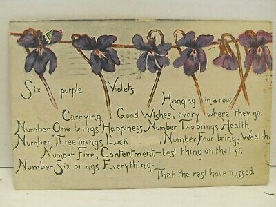 "Postcard by Sandford ""Violets Hanging in a Row"" 1910 Postmarked Maine"