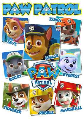 Paw Patrol Pics T-Shirt Boys Girls Kids Age 3-15 Ideal Gift/Present