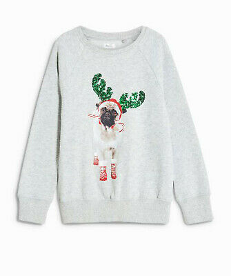 Next Girls Grey Christmas Pug Sweatshirt/ Jumper Age 3 Years BNWT Tag £12