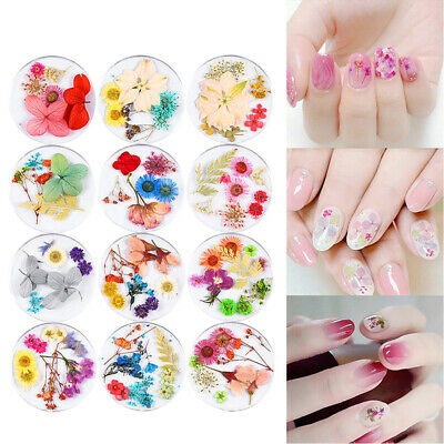 3D Floral Natural Leaf Nail Decoration Nail Art Manicure Dried Flowers Tips
