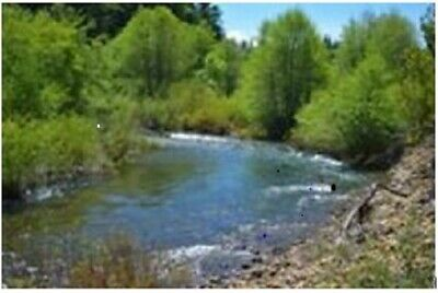 20 Acre Southern Oregon Mining Claim On The Illinois River - Rare!