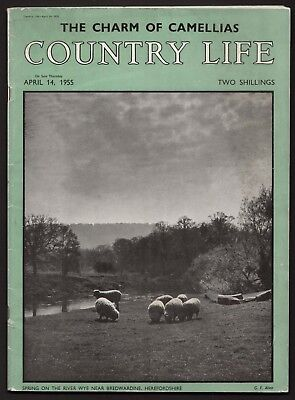 Country Life Apr 1955 GLYNDE PLACE SUSSEX RED HILLS ESSEX J.M.W. TURNER PELOTA